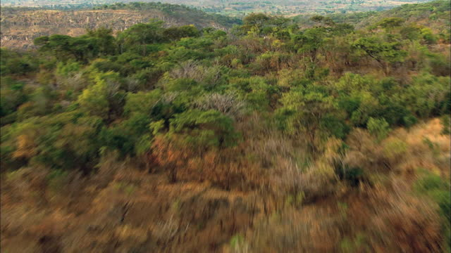 stockvideo's en b-roll-footage met view of africa's kalambo falls - documentairebeeld