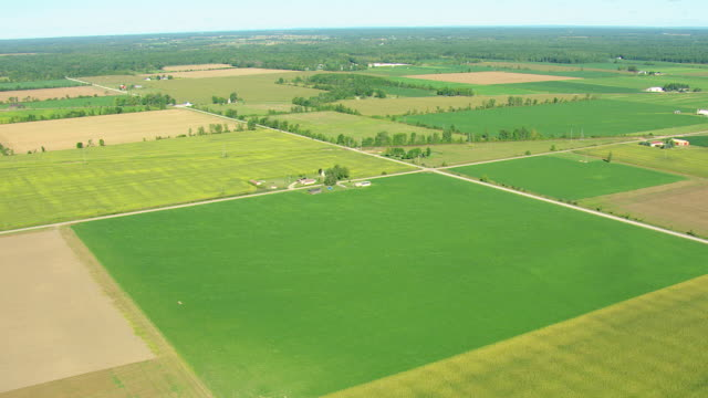 WS AERIAL View of agricultural fields with different colored patches alongside Saginaw Bay / Michigan, United State