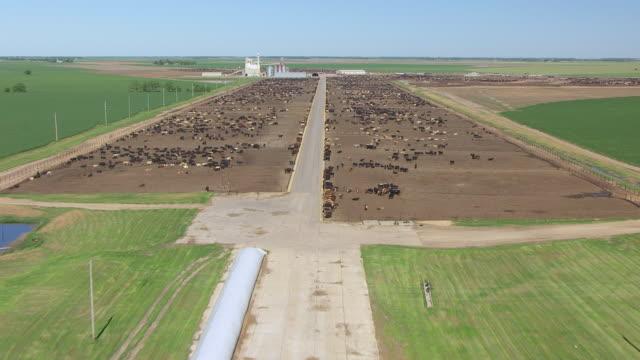 WS AERIAL TU View of airstrip to reveal cattle farm at Pratt Army Airfield / Kansas, United States
