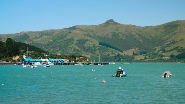 view of akaroa wharf and harbour, new zealand - akaroa stock videos & royalty-free footage