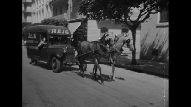view of algiers from boat in harbor vichy france troop transport sidi bel abbes anchored at dock / two horses pulling bus down street / view of pier... - anchored stock videos & royalty-free footage