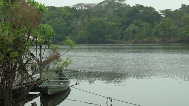 view of an amazon typical landscape with a regional motor boat - pan cam - amazonas state brazil stock videos and b-roll footage