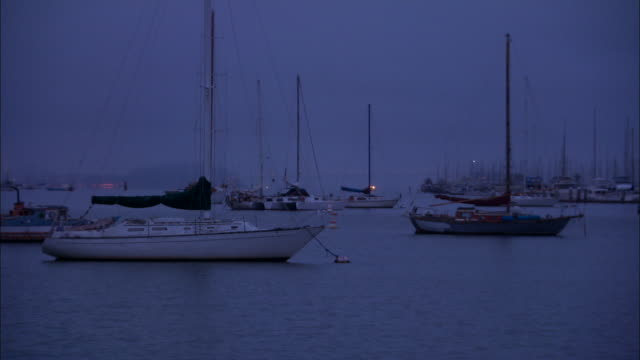 View of anchored yachts in San Francisco Bay