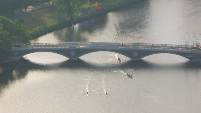 vidéos et rushes de ws aerial pov view of anderson memorial bridge with scull moving on charles river / cambridge, massachusetts, united states - massachusetts