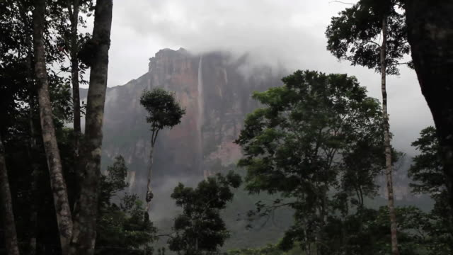 TLL MS View of  Angel Falls highest waterfall in  world / Canaima / Los roques,Bolivar State, Venezuela