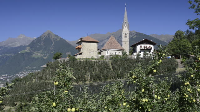 ms view of apple plantation and mountain village st. georgen / schenna, trentino, south tyrol, italy - frutteto video stock e b–roll