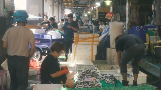 view of aquatic market,guangzhou,china. - crustacean stock videos & royalty-free footage
