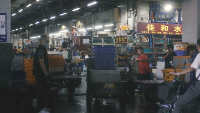 view of aquatic market,guangzhou,china. - market stock videos & royalty-free footage