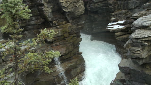 ms pan slo mo view of athabasca falls in jasper national park / jasper national park, alberta, canada. - athabasca falls stock videos and b-roll footage