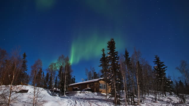 WS T/L View of Aurora above snow covering forest and log cabin / Yellowknife, Northwest Territories, Canada