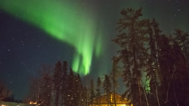 WS T/L View of Aurora and roof of log cabin with frost covering trees / Yellowknife, Northwest Territories, Canada