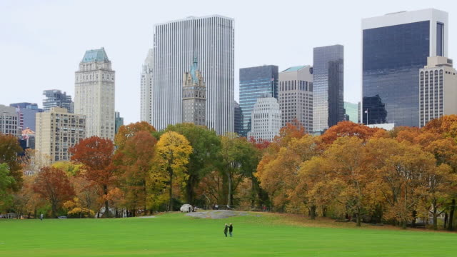ws pan view of autumn color trees and manhattan skyline at sheep meadow / new york, united states - sheep meadow central park stock videos and b-roll footage