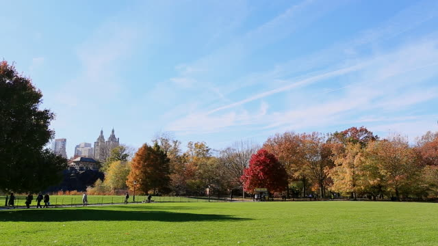 ws view of autumn color trees and sky and cloud at great lawn / new york, united states - great lawn stock videos and b-roll footage