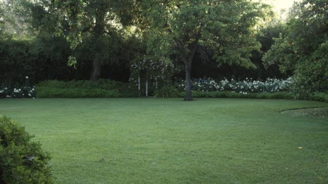 ms view of backyard / los angeles, california, usa - 庭点の映像素材/bロール