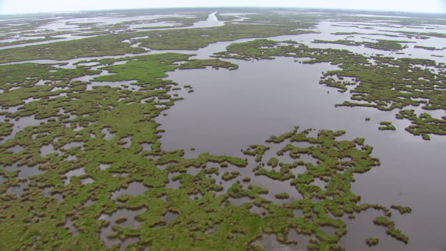ws aerial pov view of barataria bay / louisiana, united states - bay of water stock videos & royalty-free footage