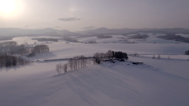 view of bare trees on snow-covered mild seven hill and mountain ranges in biei, hokkaido, japan - 冬点の映像素材/bロール