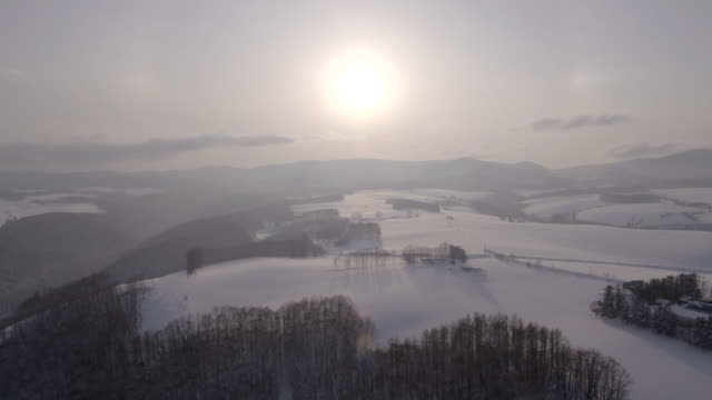 View of bare trees on snow-covered Mild Seven Hill and mountain ranges in Biei, Hokkaido, Japan