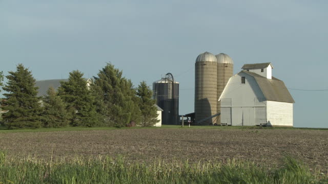 WS View of barn and silo in field / Newark, Illinois, USA