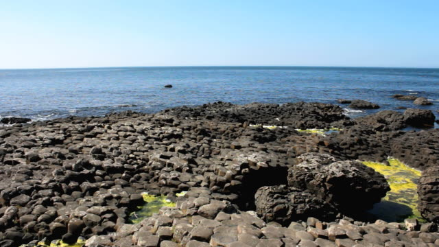 ws view of basalt shore at giant's causeway / giant's causeway, northern ireland, united kingdom  - basalt stock videos & royalty-free footage