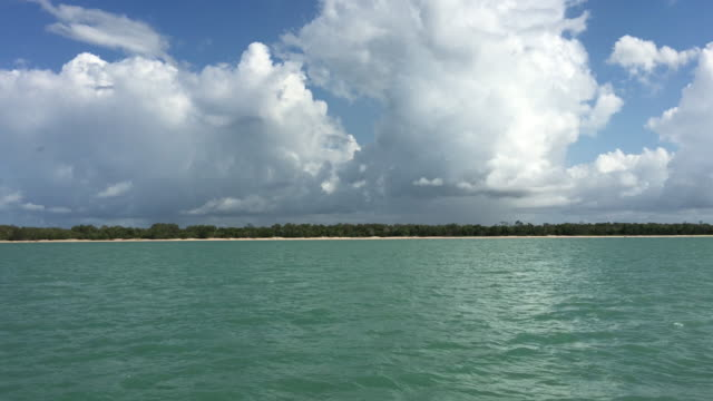 View of Bathurst Island, Tiwi Islands coastline