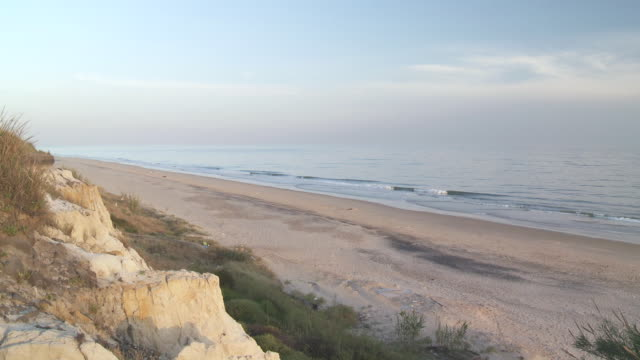 ws pan view of beach of donana national park / el rocio, andalusia, spain       - huelva province stock videos & royalty-free footage