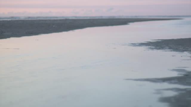 ws view of beach / st. peter-ording, schleswig holstein, germany   - schleswig holstein stock-videos und b-roll-filmmaterial