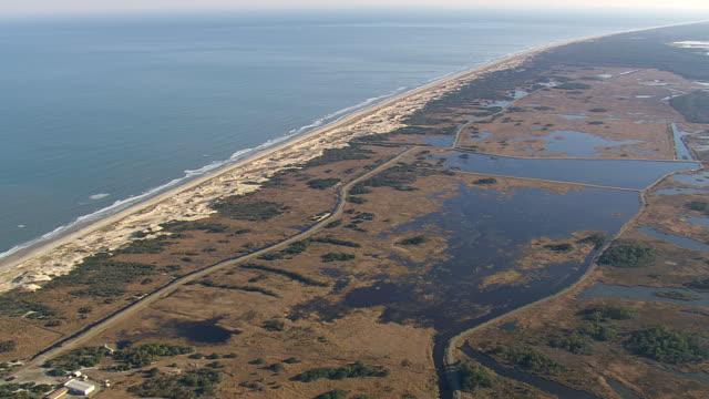 ws aerial view of beach  / virginia, united states - virginia beach stock videos & royalty-free footage