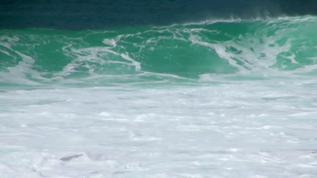 ms view of big waves at beach near santa maria / santa maria, sal, cape verde - verde color stock videos & royalty-free footage