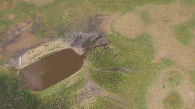vidéos et rushes de ws aerial view of birds eye view over sheyenne national grassland with ponds and shrubs / north dakota, united states - grandes plaines américaines