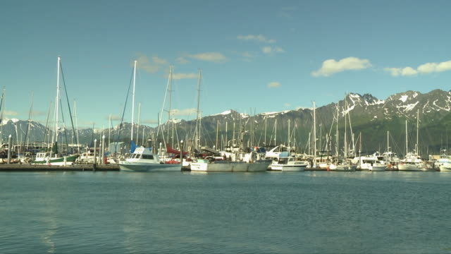 """view of boats in seward small boat harbor with rocky mountain top in chugach national forest, with partial snow, seward, kenai peninsula, alaska, blue skies."" - kenai stock videos & royalty-free footage"