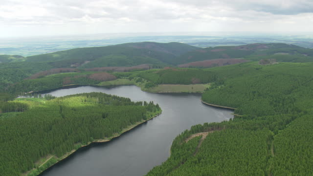 WS AERIAL View of border near Eckertalsperre / Germany