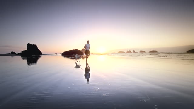 stockvideo's en b-roll-footage met ws slo mo ts view of boy and dog running on beach at sunset / bandon, oregon, united states - dog run