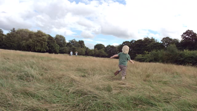 ms ts slo mo view of boy running and falling through long grass field - moving down video stock e b–roll