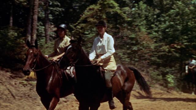 ms pov view of bridal trail in woods riders - arbetsdjur bildbanksvideor och videomaterial från bakom kulisserna