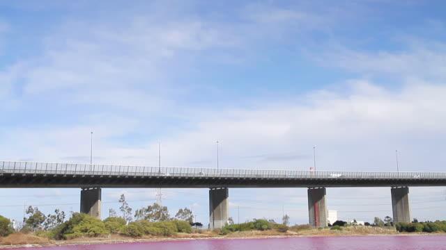 WS TD View of bright red algal bloom near Westgate Bridge, Yarra River / Melbourne, Victoria, Australia