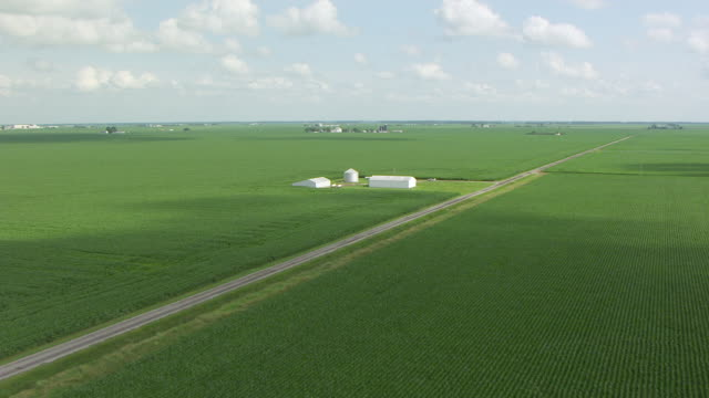 ws aerial pov view of brown and green corn field farmland / white county, indiana, united states - indiana stock videos & royalty-free footage