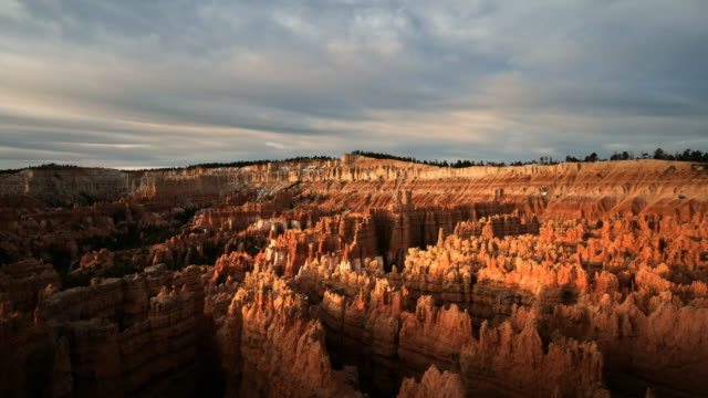 ws pan view of bryce amphitheater / bryce canyon np, utah, united states  - red rocks stock-videos und b-roll-filmmaterial
