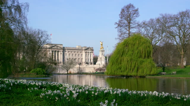 view of buckingham palace  from st james park st jame's park  london - buckingham stock videos & royalty-free footage