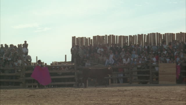 ws ts pan view of bull charging inside bull ring - bullfighter stock videos & royalty-free footage