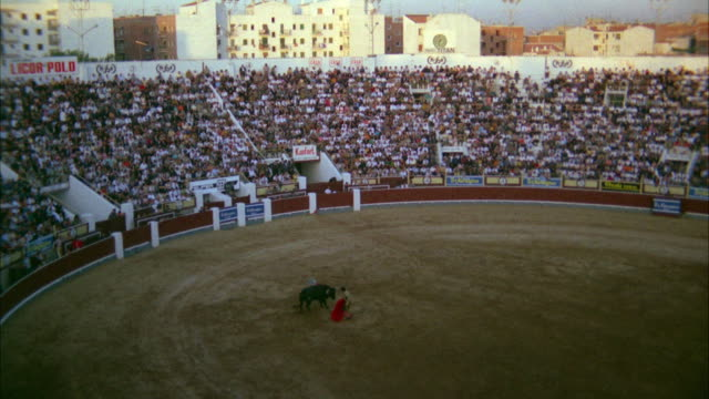 ws view of bullfighter charging bull with cape - bullfighter stock videos & royalty-free footage