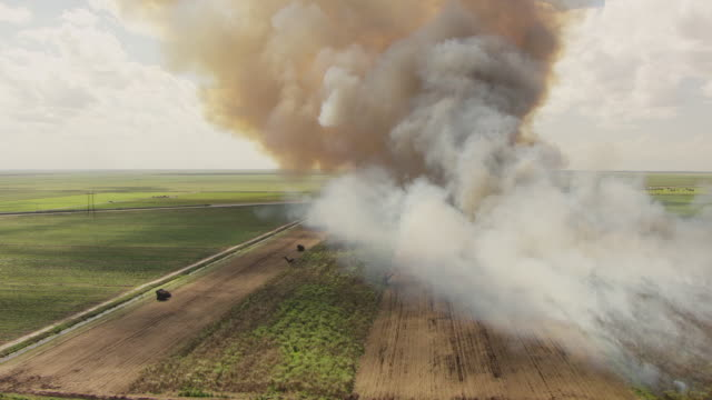 WS AERIAL DS View of burning sugarcane on farm and smoke rising to sky / Lake Okeechobee, Florida, United States