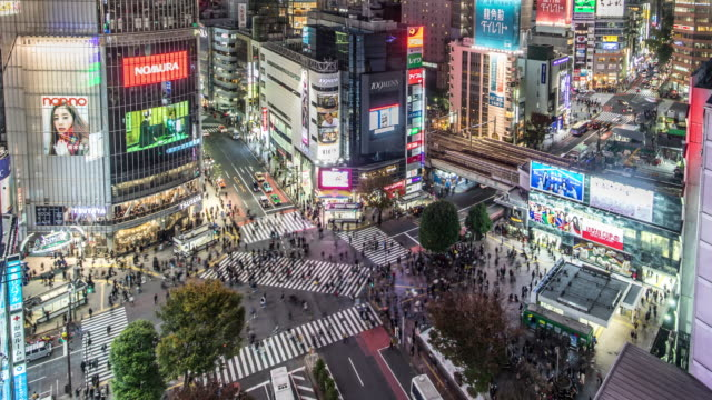 T/L WS POV View of Busy Traffic in Shibuya at Night / Tokyo, Japan
