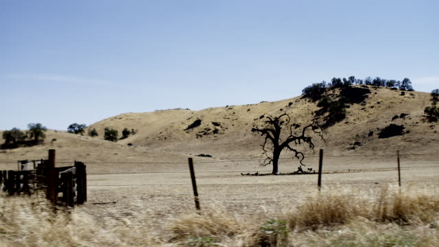 view of california farmland, from moving vehicle - land stock videos & royalty-free footage
