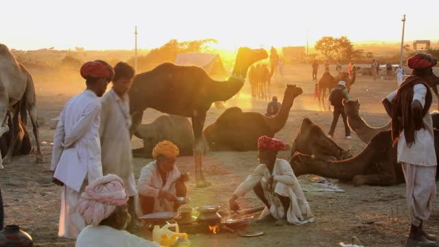 ws view of camel herdsman at sunset gathering in groups camel fair / pushkar, rajasthan, india  - 牧夫点の映像素材/bロール