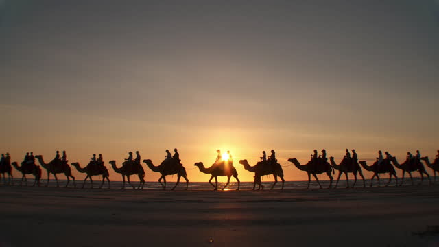 ws view of camel ride at sunset time / broome, western australia, australia - tourism stock videos & royalty-free footage