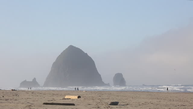 view of cannon beach and gentle surf - cannon beach stock videos & royalty-free footage