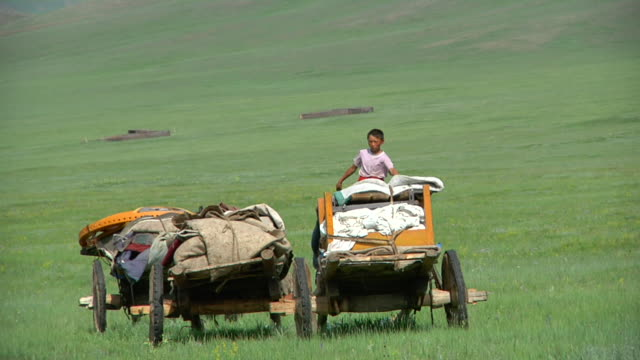 ms view of cart loads to move camp and boy riding yak / central-south mongolia, mongolia - fahrzeug fahren stock-videos und b-roll-filmmaterial