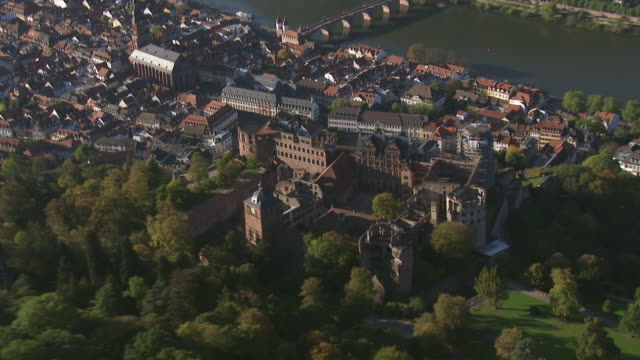 ws zo view of castle and river with trees / heidelberg, baden wurttemberg - heidelberg germany stock videos & royalty-free footage