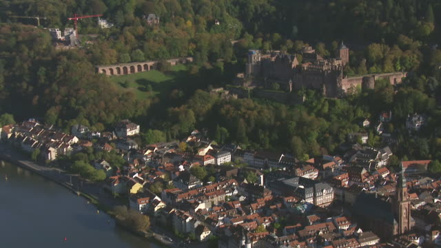 ws aerial zi view of castle and trees / heidelberg, baden wurttemberg - heidelberg castle stock videos & royalty-free footage