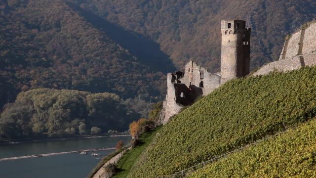 WS View of castle near vineyard / Rüdesheim, Hesse, Germany